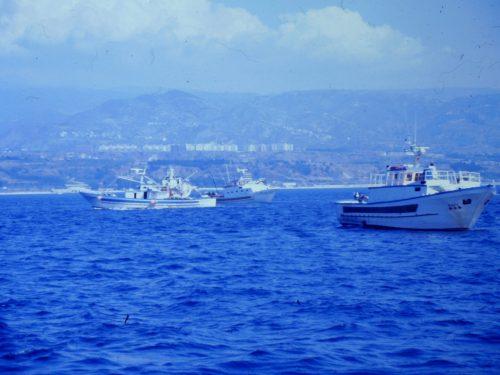 Noi canottieri in regata