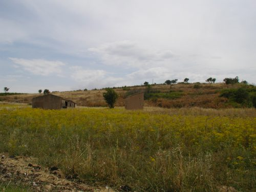 Sulle orme di San Calogero di Naro